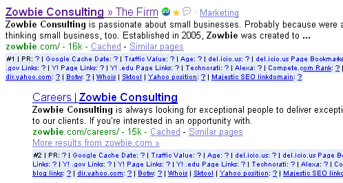 google-search-result-zowbie-consulting